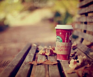 starbucks, autumn, and coffee image