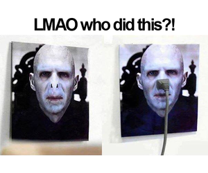 funny, voldemort, and harry potter image