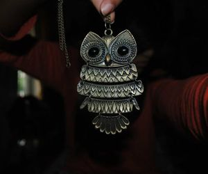 owl, fashion, and photography image