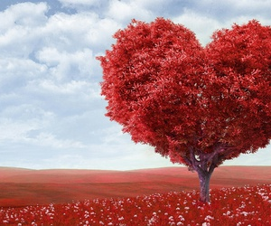 love, heart, and tree image