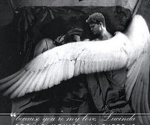 daniel, fallen, and love image