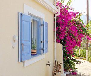 capri, nature, and Greece image