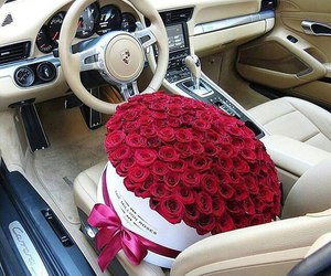 rose, flowers, and car image