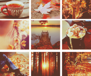 amazing, coffee, and leaves image