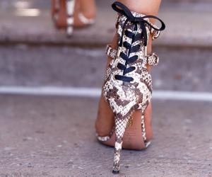 fashion, snakeskin, and style image