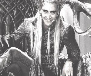 funny, lee pace, and the hobbit image