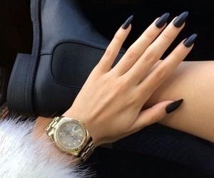animals, black, and fashion image