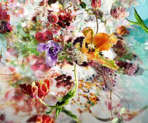 art, flowers, and wallpaper image