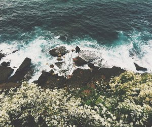 blue, flowers, and ocean image