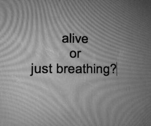 alive, quotes, and grunge image