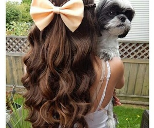 curls and hairstyle image