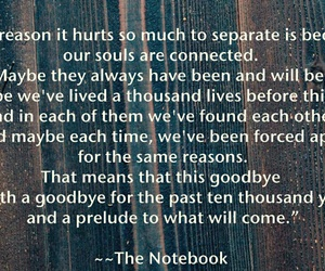life, souls, and the notebook image