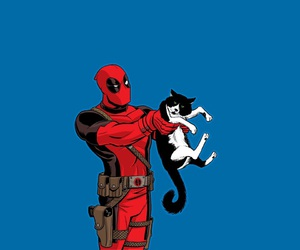 cat and deadpool image