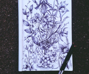 art, draw, and floral image