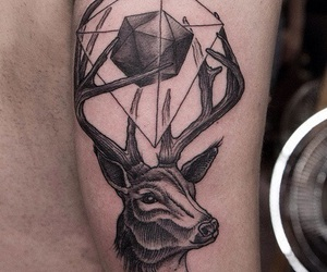 tattoo, deer, and arm image