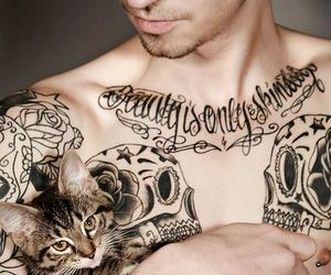 guy, man, and cat image