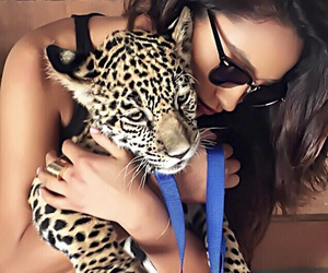 shay mitchell, animal, and pretty little liars image