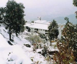 hotels in shimla and honeymoon packages image