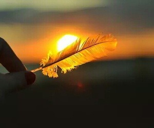 sun, feather, and sunset image