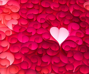 creative, heart pink, and heart image