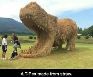 amazing, dinosaur, and funny image