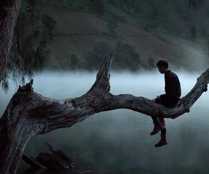 dark, alone, and tree image
