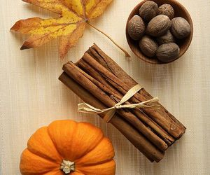 autumn, pumpkin, and Cinnamon image