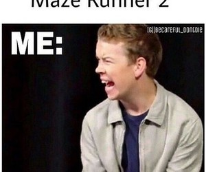 funny and maze runner image