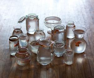 goldfish and jar image