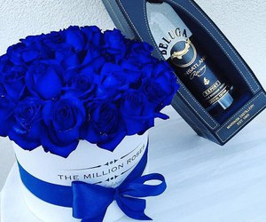 roses and blue image