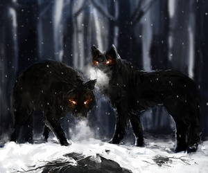 black, noir, and wolf image