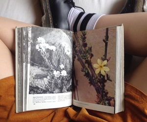 book, art, and flowers image
