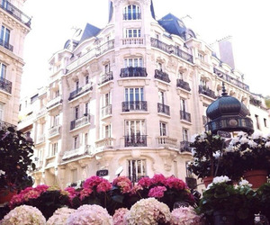 flowers, city, and paris image