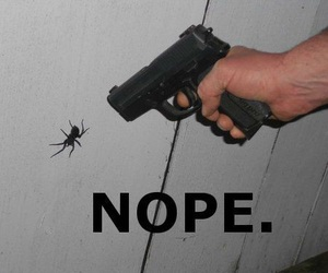 funny and nope image