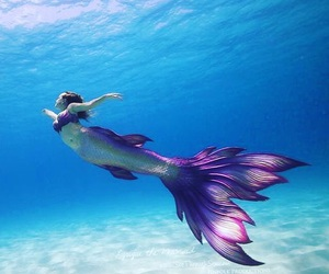mermaid, fantasy, and ocean image