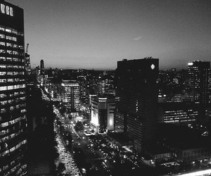 black and white, building, and city lights image