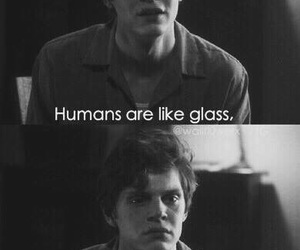 kit, quotes, and evan peters image