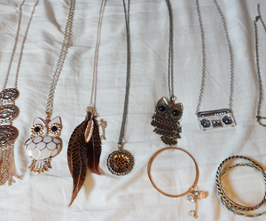 fashion and shahds wouldbe owl image