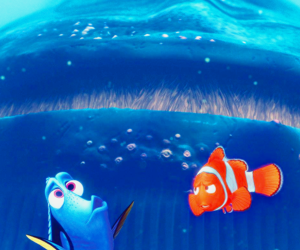 disney, finding nemo, and photography image