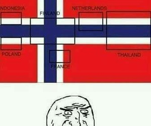 funny, norway, and flag image