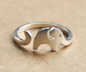 elephant and ring image