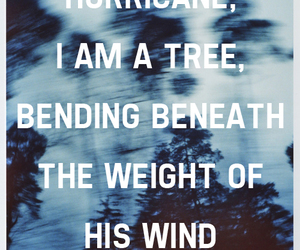 love, quote, and hurricane image