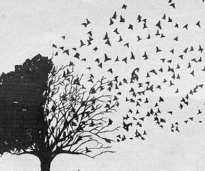 tree, bird, and Dream image