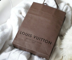 Louis Vuitton, fashion, and bag image