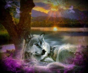 wolf, fantasie, and love image