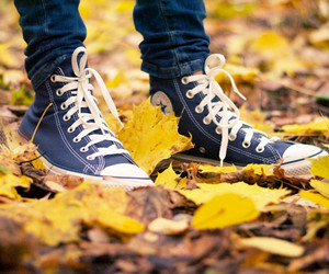 converse, autumn, and leaves image