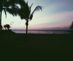 beach, palm trees, and brunei image