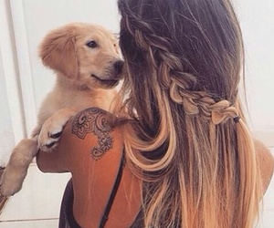 beauty, dog, and hair image