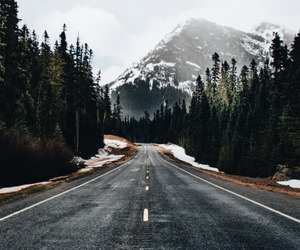 mountains, road, and forest image