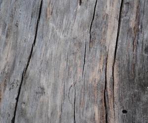 wood and theme image